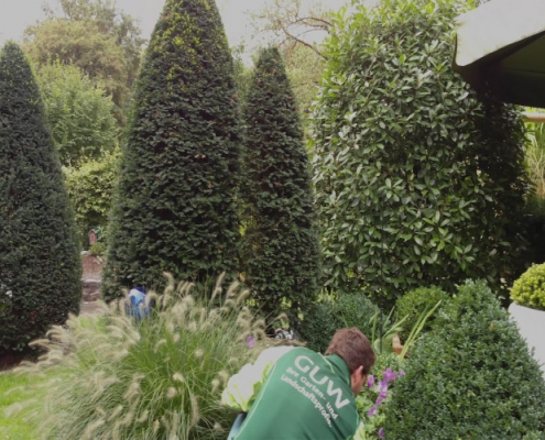 Garten- und Grünflächenpflege in Münster